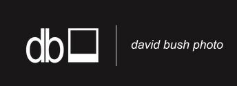 David Bush Photography